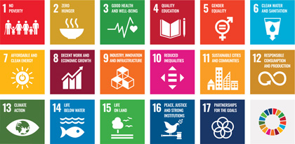 Key CSR Themes and Sustainable Development Goals